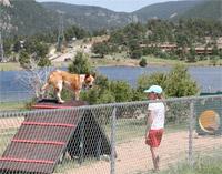 Estes Valley Dog Park